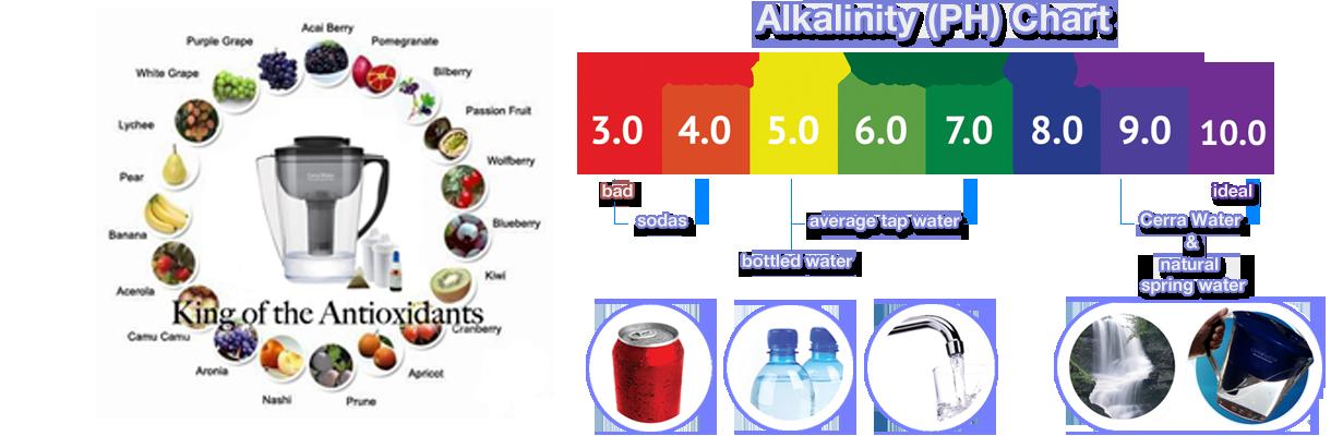 bem-pemf-detoxification_water