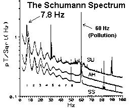 bem-schumann spectrum